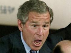 Bush42percent